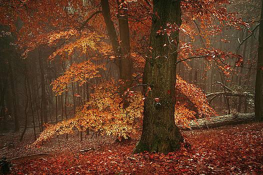 Jenny Rainbow - Autumn Fire