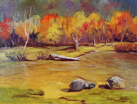 Autumn Fire by Sharon E Allen
