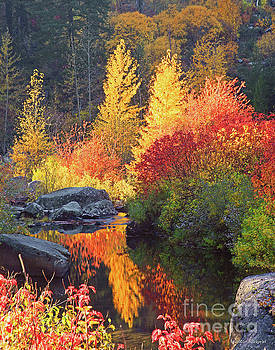 Autumn Fire by Winston Rockwell