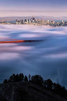 Autumn Flow, San Francisco by Vincent James