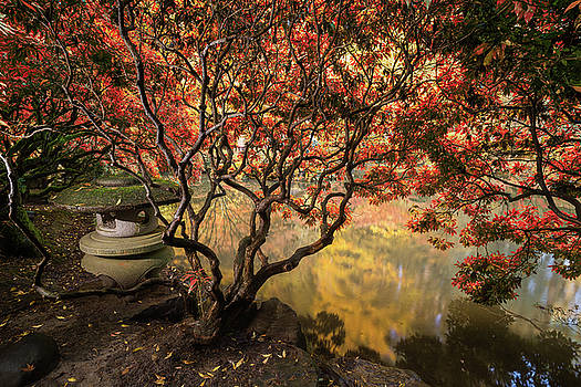 Autumn foliage and reflections in pond. by William Lee