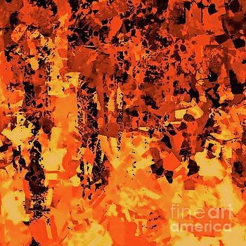 Tim Richards - Autumn Forest 3