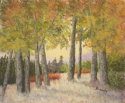 Autumn Forest by Brenda Maas