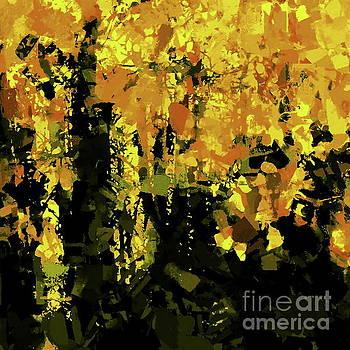 Tim Richards - Autumn Forest