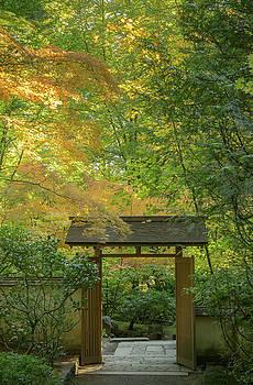 Autumn Gate by Don Schwartz