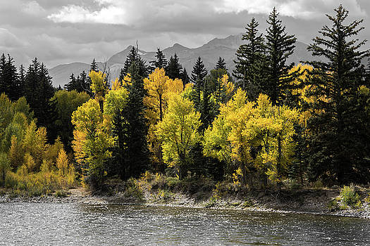 Autumn Glow by Colleen Coccia