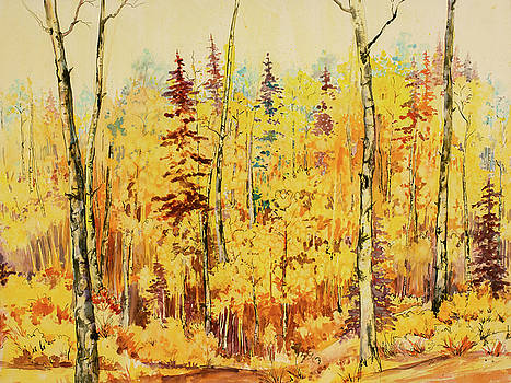 Autumn Gold by Connie Williams