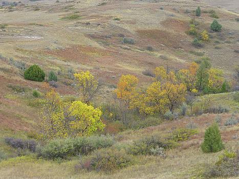 Autumn Grasslands Enchantment by Cris Fulton