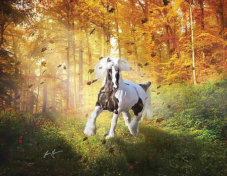 Autumn Gypsy Splendor by Jamie Mammano