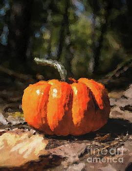 Autumn Halloween Pumpkin by Phil Perkins