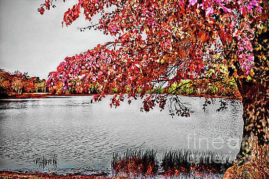Autumn Harmony by Margaret Koc