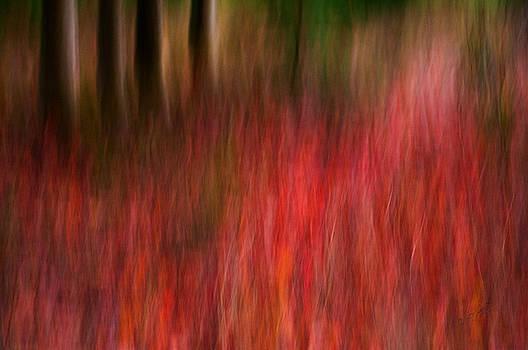 Autumn has FALLen by Joy Gerow