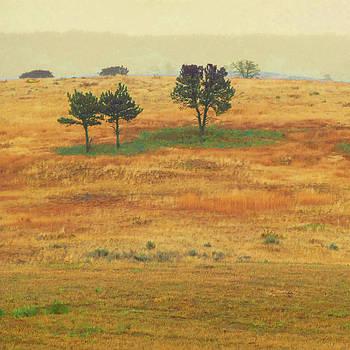 Autumn Hill Reverie by Cris Fulton