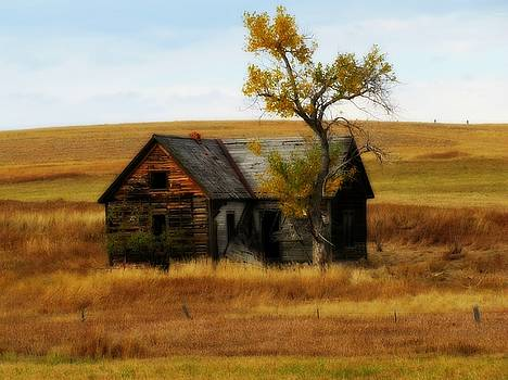 Barbara Henry - Autumn Homestead