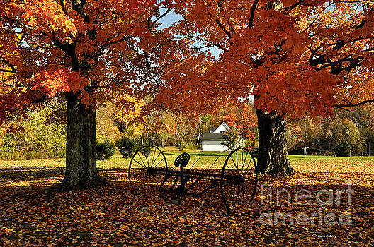 Autumn Hush by Diane E Berry