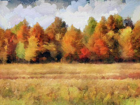 Autumn Impression 1 by Cedric Hampton
