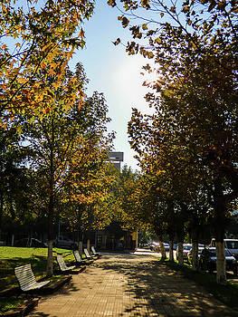 Autumn in Argentina by Helissa Grundemann