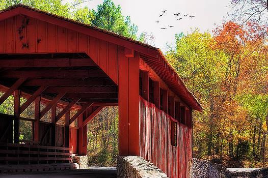 Autumn in Arkansas by Joan Bertucci
