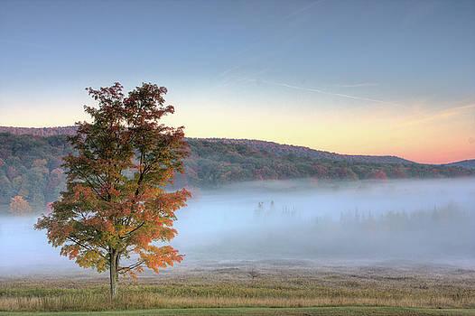 Autumn in Canaan Valley WV  by Jack Nevitt