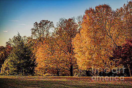Doug Berry - Autumn in Full Color at Maymont 9698T