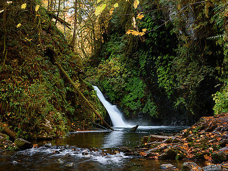 Autumn in Goldstream by Keith Boone