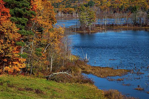 Karol Livote - Autumn In Litchfield County