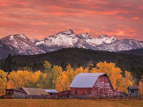 Scott Wheeler - Autumn in Montana