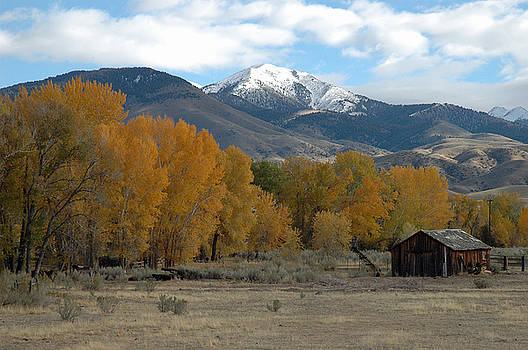 Autumn in Montana's Madison Valley by Bruce Gourley