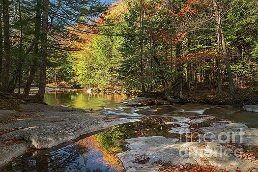 Autumn in New Hampshire by Sharon Seaward