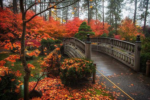 Autumn in Nishinomiya Japanese Garden by James Richman