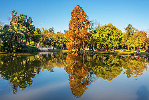 Autumn in Parque Tres de Febrero, Buenos Aires by Venetia Featherstone-Witty