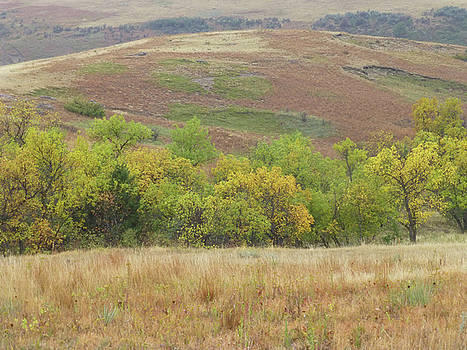 Autumn in Slope County by Cris Fulton