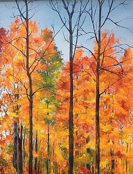 Autumn in South Wales NY by Ellen Canfield