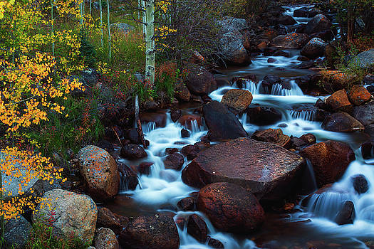 Autumn In The Arapaho National Forest by John De Bord