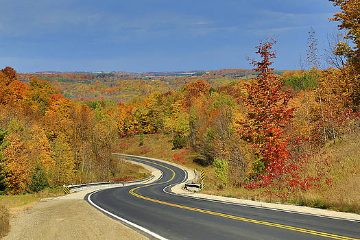 Gary Hall - Autumn in the Hockley Valley