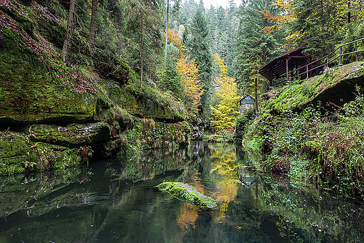 Autumn in the Kamnitz Gorge by Andreas Levi