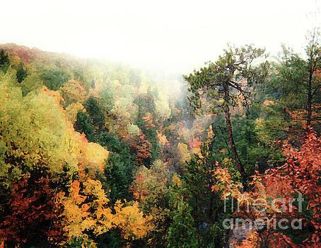 Autumn In Upper Peninsula by Phil Perkins