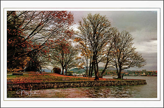 Autumn in Vancouver by Norma Warden