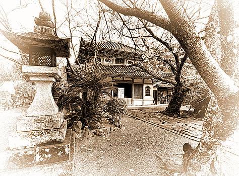 Autumn in Wakayama by Wayne Sherriff