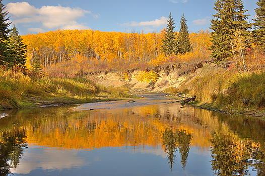 Autumn in Whitemud Ravine by Jim Sauchyn