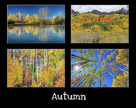 James BO Insogna - Autumn