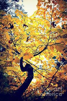 Autumn Joy by Kiana Carr