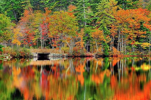 Autumn Lake Chocorua by Brian Pflanz