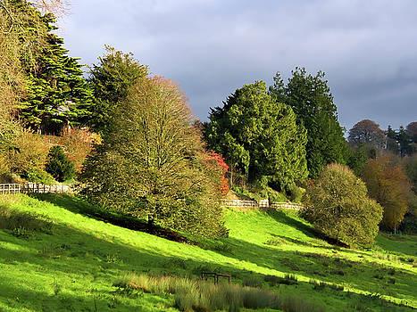 Autumn Landscape 2 - Somerset by Susie Peek