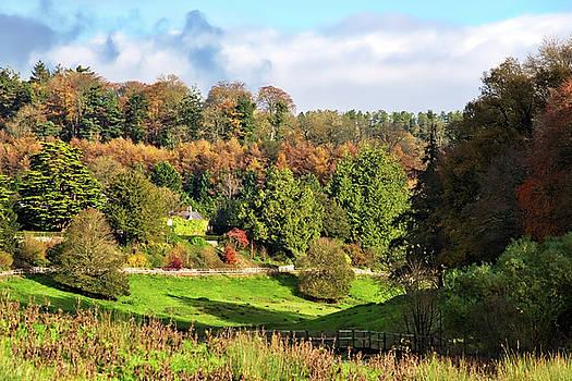 Autumn Landscape - Somerset by Susie Peek