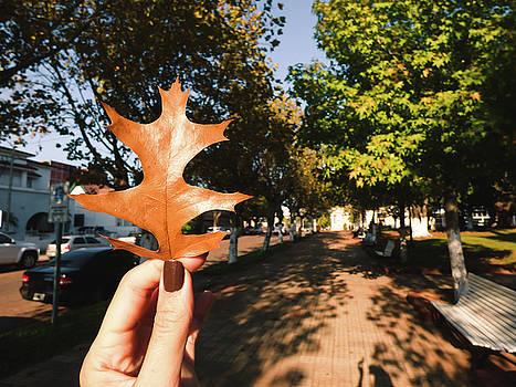 Autumn leaf by Helissa Grundemann