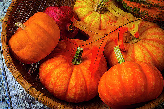 Autumn Leaf With Pumpkins by Garry Gay