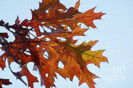 Autumn Leaves 21 by Jean Bernard Roussilhe