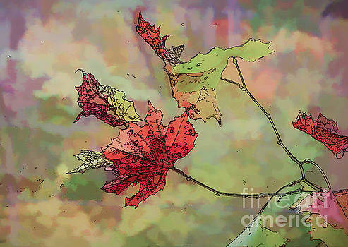 Autumn Leaves - Abstract Art by Kerri Farley