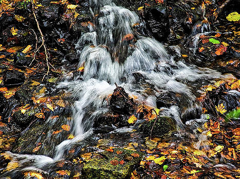 Autumn Leaves At A Waterfall by Susie Peek